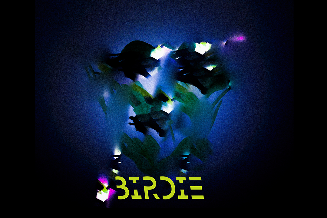 birdie small poster 2